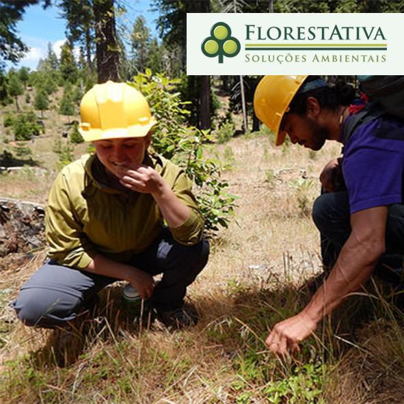 Assessoria de legislação ambiental