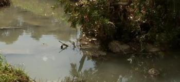 Licenciamento de atividades poluidoras